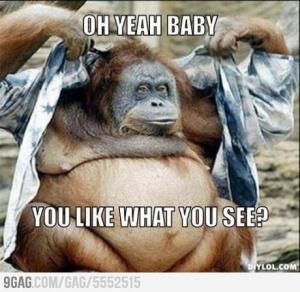 sexy orangutan